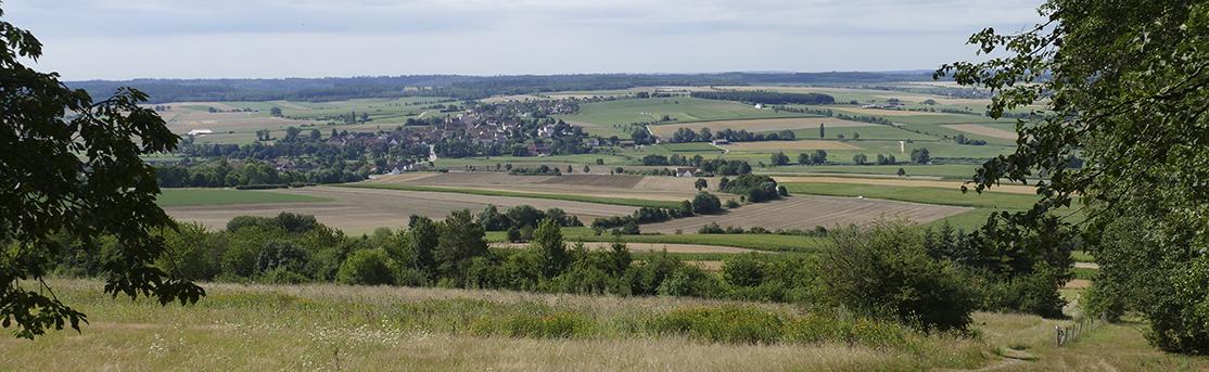 Gartenbau Ansbach aelf ansbach